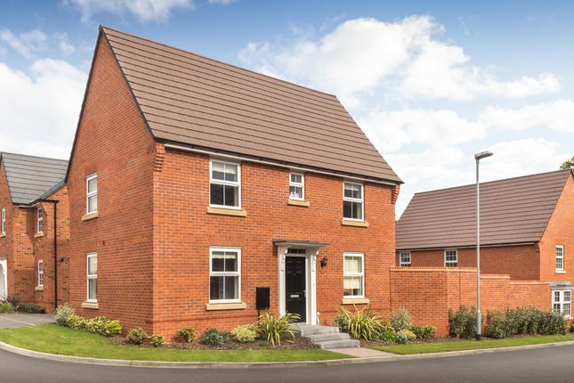 "Thumbnail Detached house for sale in ""Hadley"" at Park View, Moulton, Northampton"