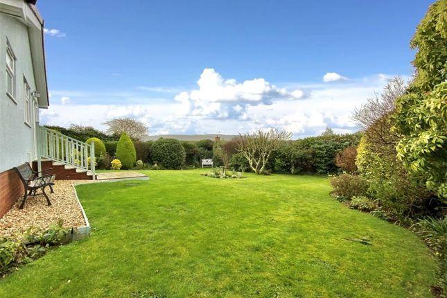 Garden of Stevens Lane, Sidmouth, Devon EX10