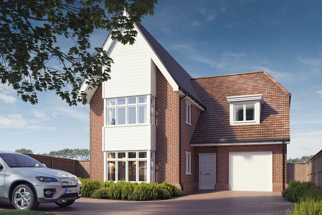 Thumbnail Detached house for sale in Tollesbury Road, Tolleshunt D'arcy, Maldon