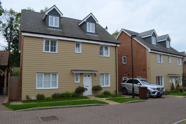 Thumbnail Detached house to rent in Harrison Avenue, Longfield