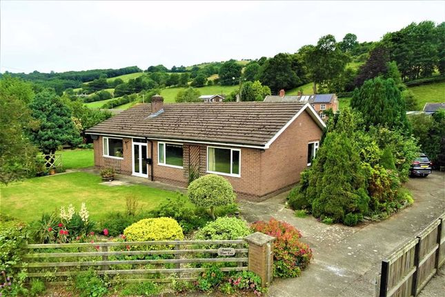 Thumbnail Bungalow for sale in Afon Las, The Green, Welshpool, Powys