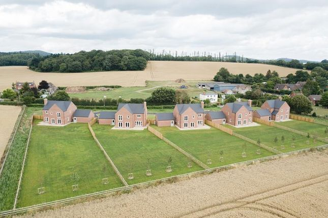 Thumbnail Detached house for sale in The Orchards, Heath Close, Bromsberrow Heath, Near Ledbury, Herefordshire