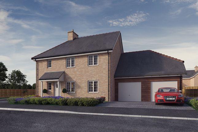 Thumbnail Detached house for sale in Plot 1, 'the Chancellors', Bedford Road, Moggerhanger