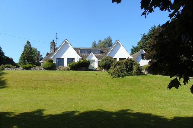 Thumbnail Detached house for sale in Ballymorran Road, Killinchy, Newtownards, County Down