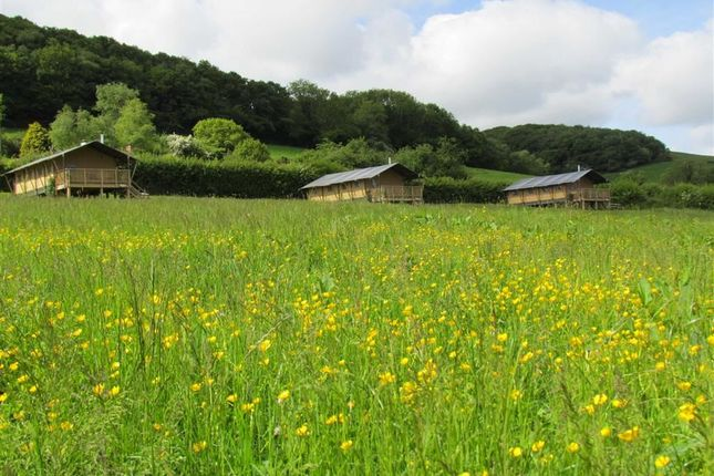 Thumbnail Leisure/hospitality for sale in Western Meadows Glamping, New Mills, Launceston