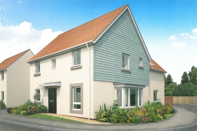 Thumbnail Detached house for sale in Primrose, Weston Lane, Totnes