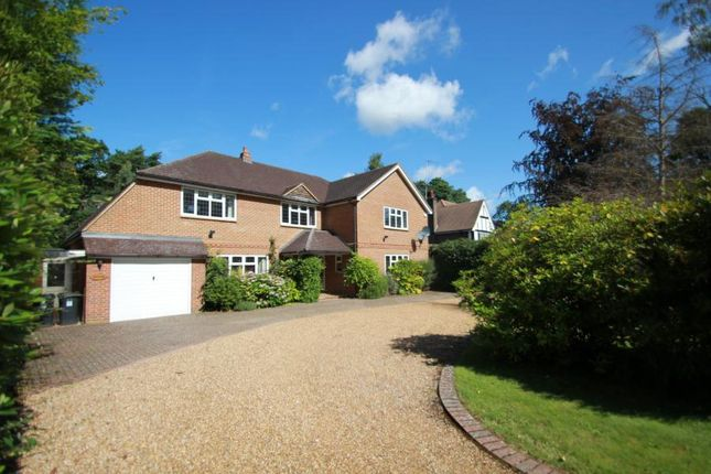 Thumbnail Detached house to rent in Pyrford, Woking, Surrey