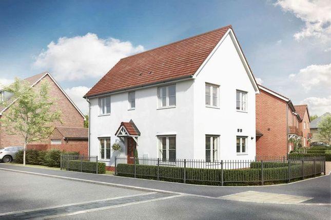 Thumbnail Detached house for sale in Randolph Close, Maldon