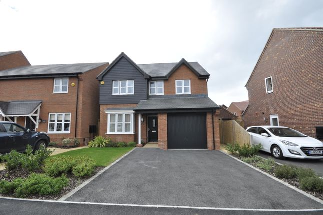 Thumbnail 4 bed detached house to rent in Thompson Close, Mickleover, Derby