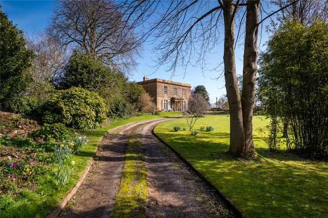 Thumbnail Link-detached house for sale in South Petherton, Somerset