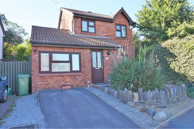 Thumbnail Detached house for sale in Timothy Rees Close, Danescourt