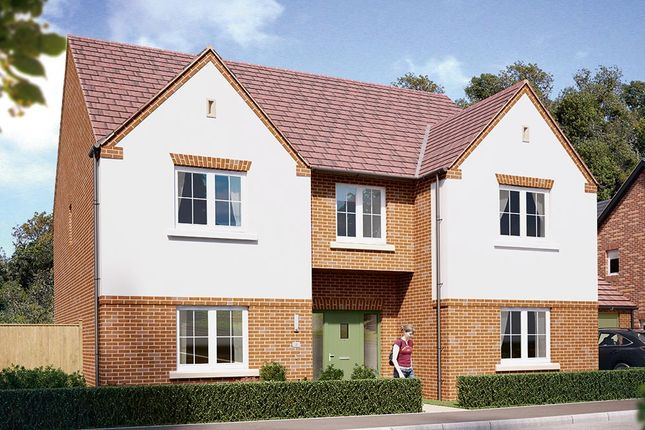 """Thumbnail Detached house for sale in """"The Oakham"""" at Boughton Road, Moulton, Northampton"""