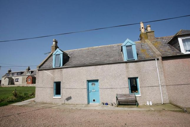 Thumbnail Semi-detached house to rent in Whinnyfold, Cruden Bay