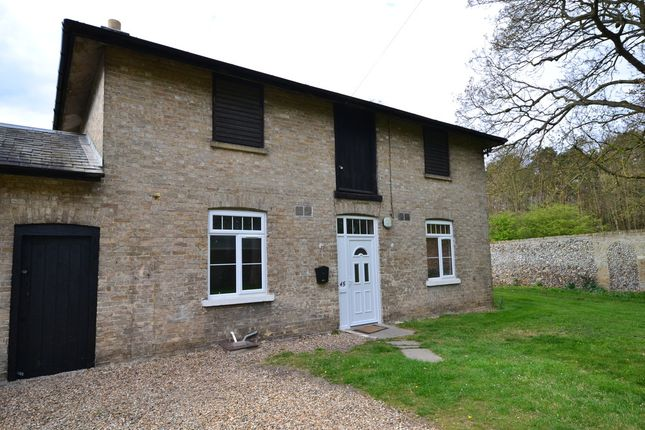 Thumbnail Cottage to rent in Dane Hill Road, Kennett, Newmarket