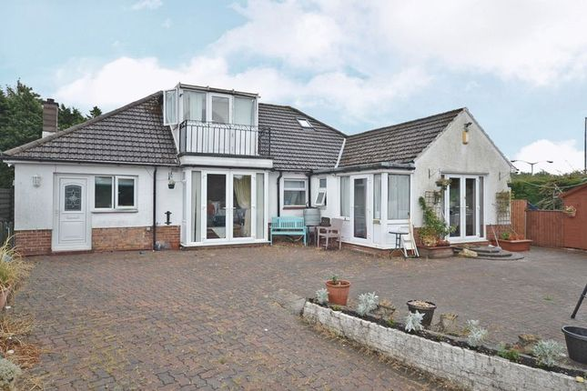 Thumbnail Detached bungalow for sale in Large Family House, Malpas Road, Newport