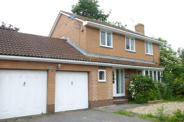 Thumbnail Detached house to rent in Hobbiton Road, Weston-Super-Mare