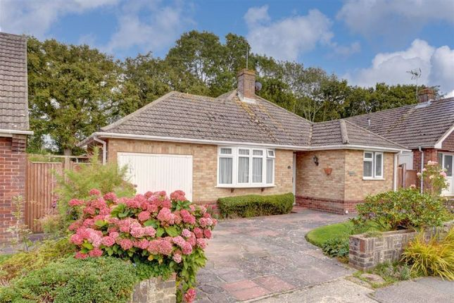 2 bed detached bungalow for sale in The Drive, Hailsham BN27