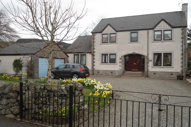 Thumbnail Detached house for sale in Ballplay Road, Moffat