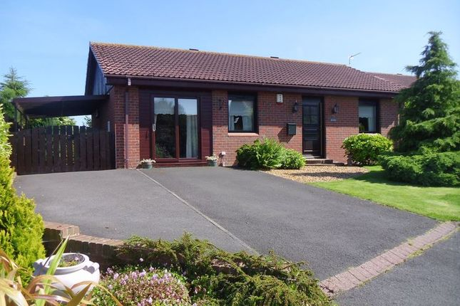 Thumbnail Bungalow for sale in Mariners View, Amble, Morpeth