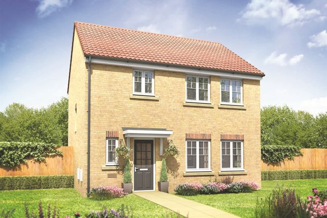 "Thumbnail Detached house for sale in ""The Whitehall"" at Burwell Road, Exning, Newmarket"