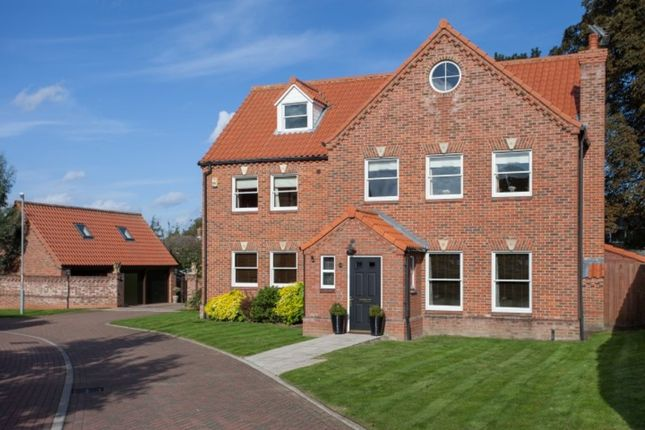 Thumbnail Detached house for sale in Appleacres, Old Catton, Norwich