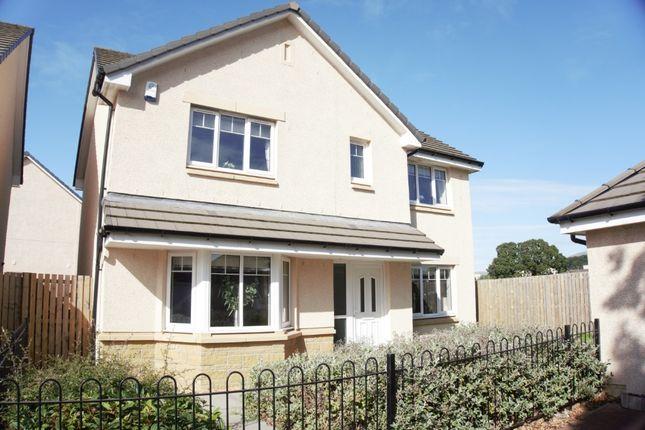 Thumbnail Detached house for sale in Plot 26 Cairngorm, Oaktree Gardens, Alloa Park, Alloa, Stirling