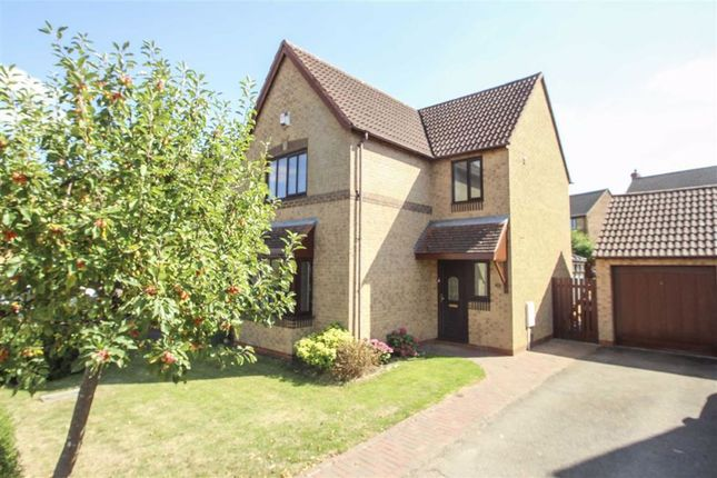 Thumbnail Detached house to rent in Lamberhurst Grove, Kents Hill, Milton Keynes