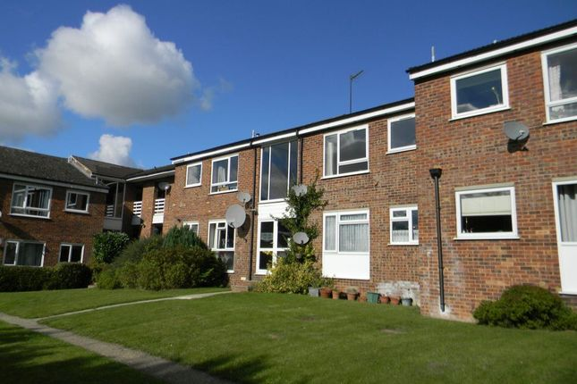 Thumbnail Property to rent in Chiltern Park Avenue, Berkhamsted