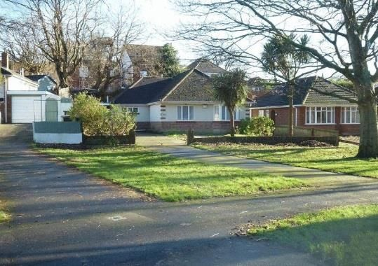 Thumbnail Bungalow to rent in Moorside Road, Bournemouth