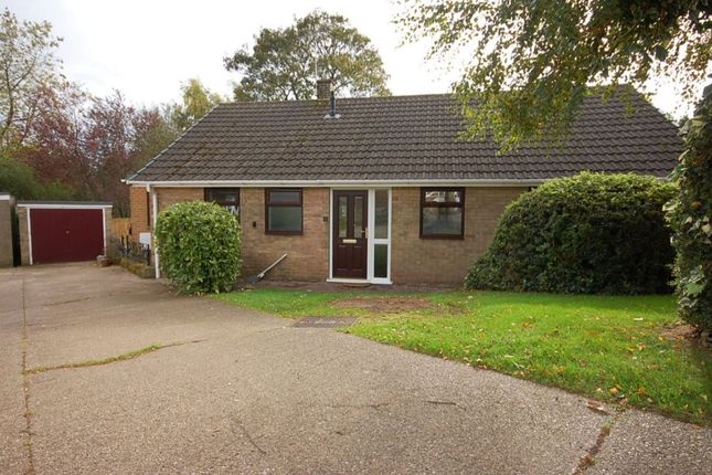 Thumbnail Bungalow to rent in Chestnut Avenue, Holbrook, Belper