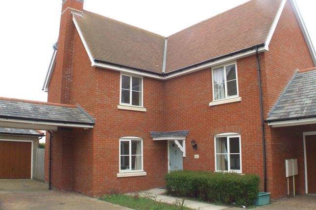 Thumbnail Detached house to rent in Walnut Drive, Mile End, Colchester