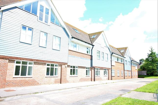 Thumbnail Flat to rent in Lakewood Road, Highcliffe, Christchurch