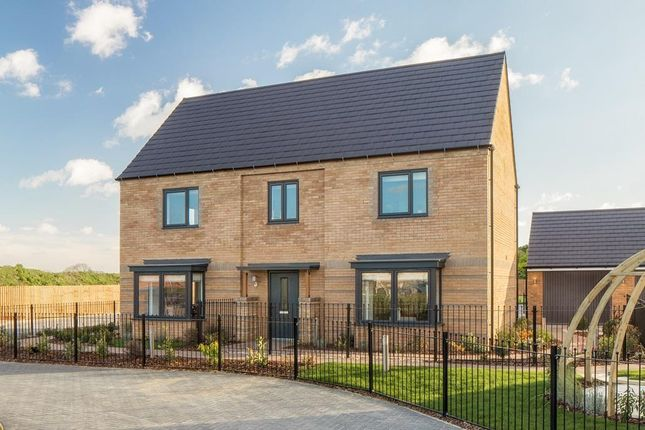 """Thumbnail Detached house for sale in """"Henley"""" at Wellington Road, Northstowe, Cambridge"""