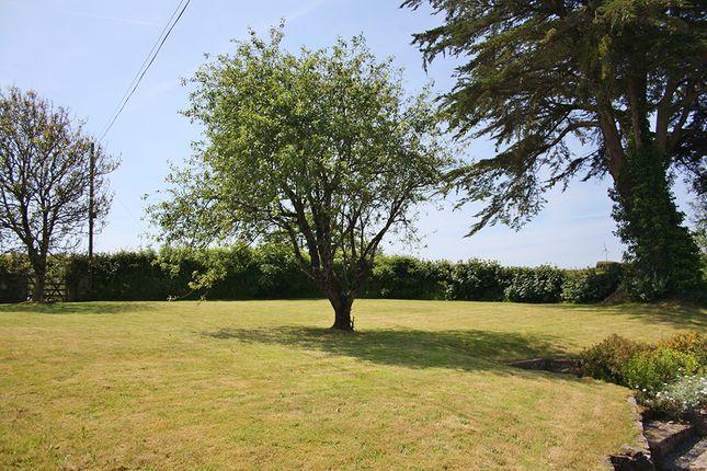 Garden of South Petherwin, Launceston PL15