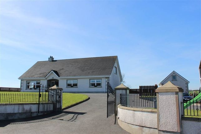 Thumbnail Detached house for sale in Mayobridge, Newry