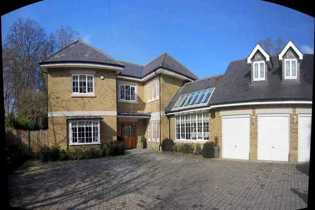 Thumbnail Detached house to rent in Queens Hill Rise, Ascot