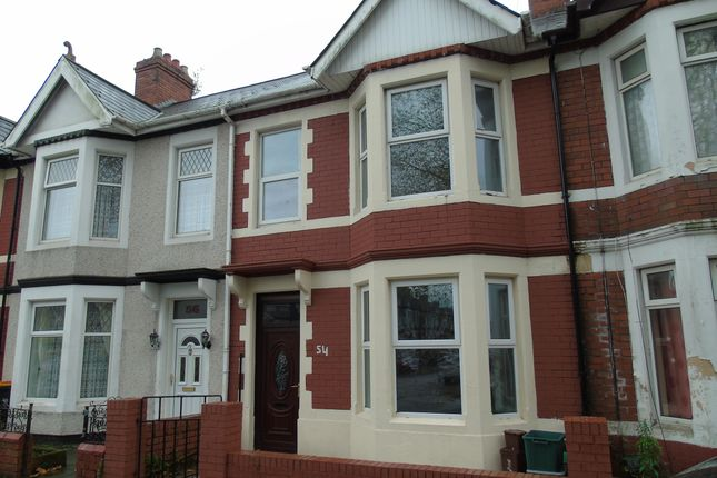 Thumbnail Property to rent in Rugby Road, Newport