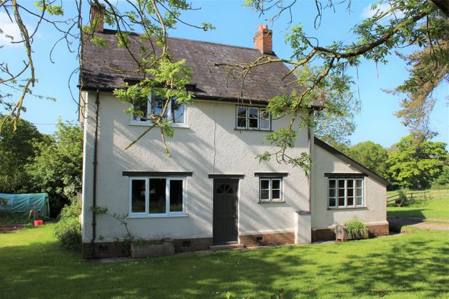 Thumbnail Detached house to rent in Greenoge, Lowton, Taunton