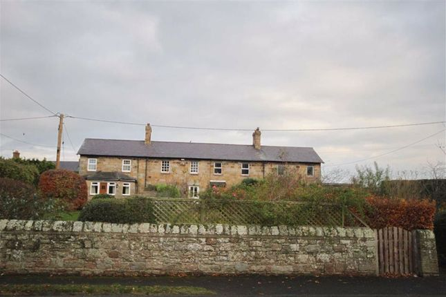 Thumbnail Cottage for sale in The Village, Fenwick, Northumberland
