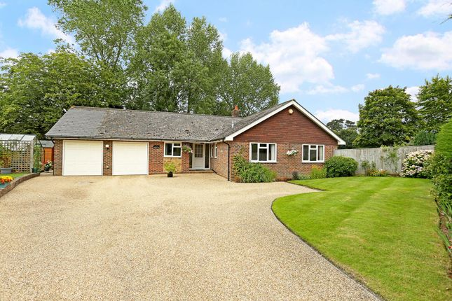 Thumbnail Detached bungalow for sale in Lewes Road, Halland, Lewes