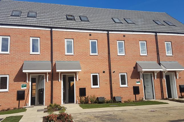 Thumbnail Terraced house to rent in Linus Grove, Cardea, Peterborough