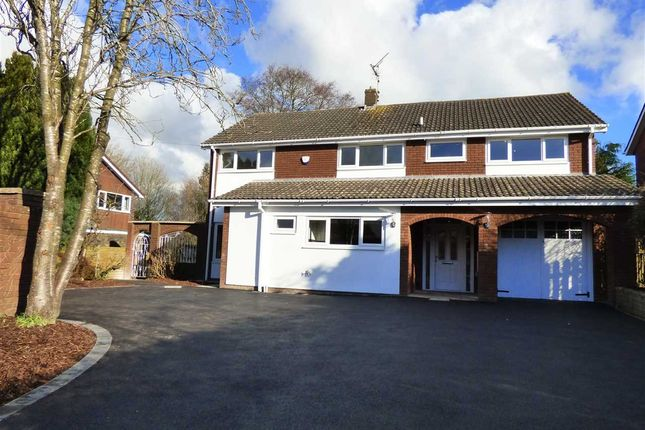 Thumbnail Detached house for sale in Ambleside, Primrose Green, Raglan