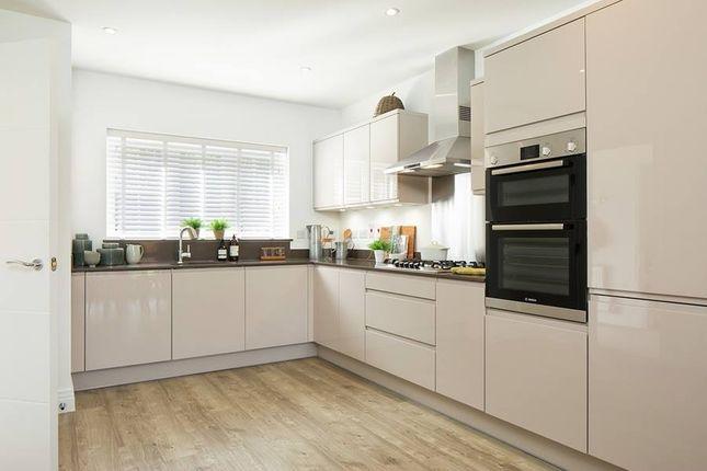 "Thumbnail Property for sale in ""The Guydon"" at Jones Hill, Hampton Vale, Peterborough"