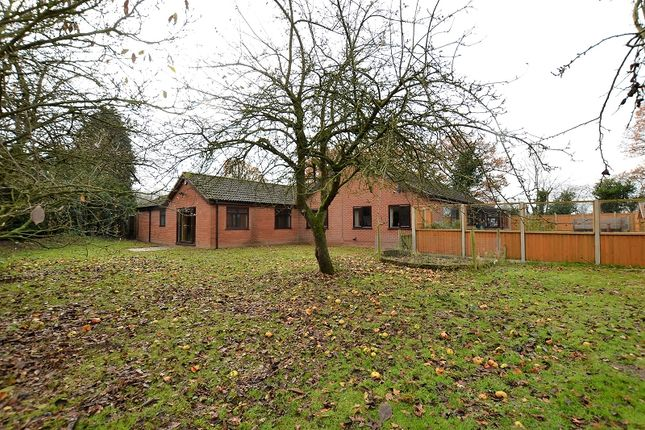 Thumbnail Bungalow for sale in Dereham Road, Westfield, Dereham, Norfolk.