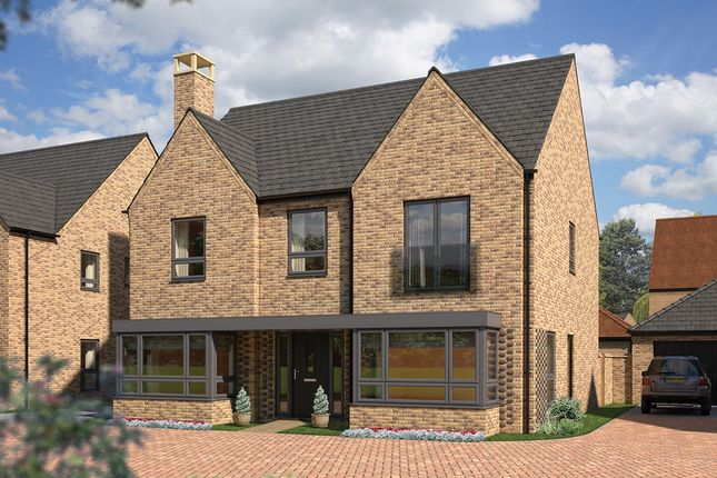 "Thumbnail Detached house for sale in ""The Lime"" at Station Road, Longstanton, Cambridge"