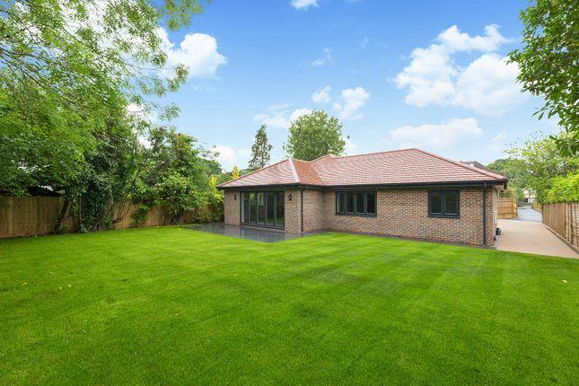 Thumbnail Detached bungalow for sale in Avenue Road, Cranleigh