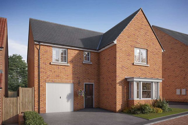 """Thumbnail Detached house for sale in """"The Grainger"""" at Showground Road, Malton"""