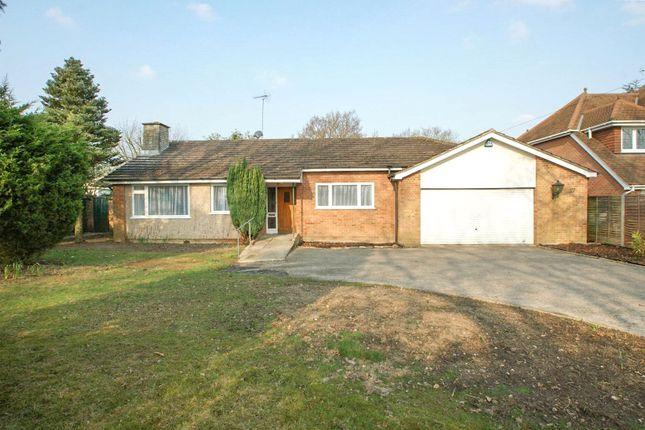 Thumbnail Detached bungalow to rent in Robin Hood Lane, Winnersh, Wokingham, Berkshire