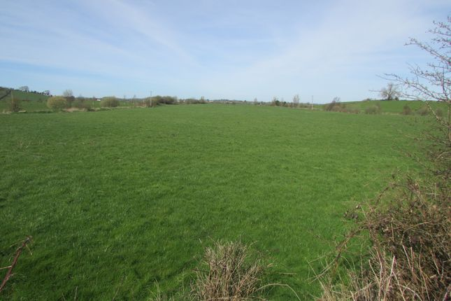 Thumbnail Property for sale in Reaghstown, Ardee, Louth