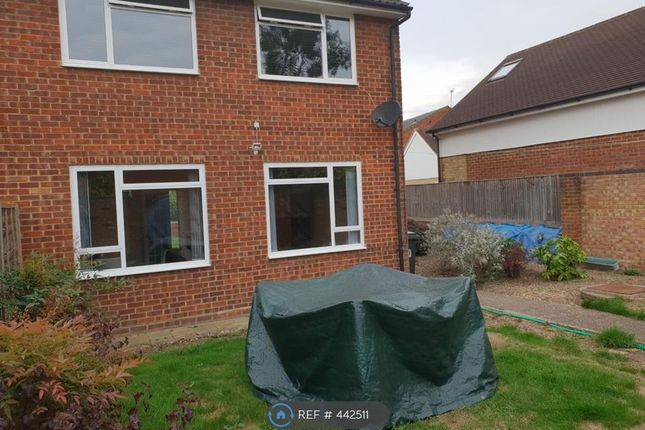 Thumbnail Semi-detached house to rent in Masons Road, Slough